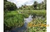 4.42 Hectares with Derelict House, Pill Road, Kilmacow, Co. Kilkenny