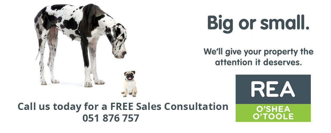 call us today for a FREE sales consultation 1